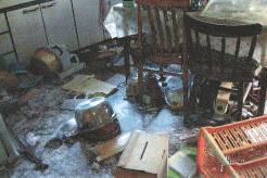 福島警戒区域で野生化したペットが住宅荒らす