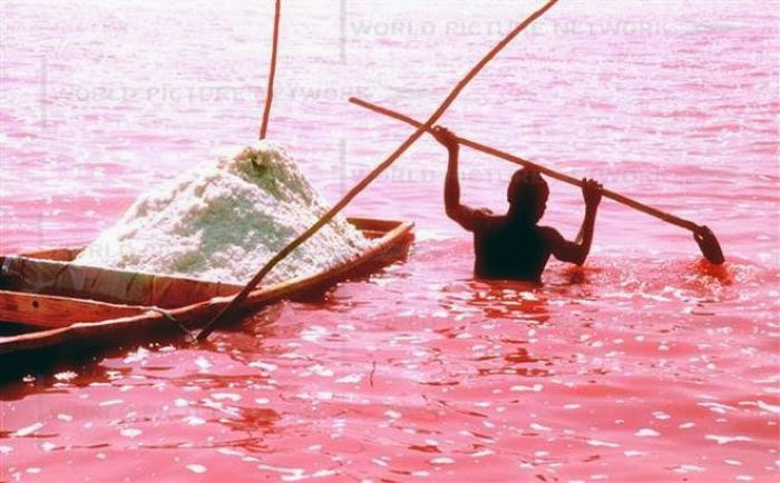 There Are Actually Seven Other Pink Lakes Around The World That Similar To Lake Hillier Is Rebta In Senegal Hutt Lagoon Eastern