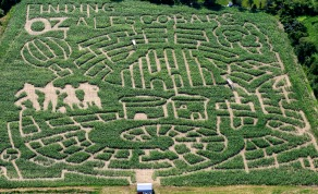 Escobar Farm's Corn Maze_The Wizard of Oz_ Anniversary_New England Fall Events