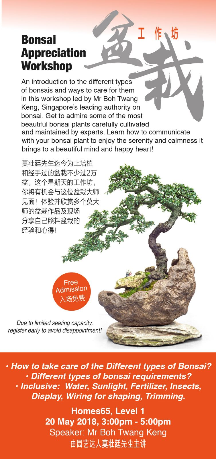 Phenomenal The Arts Of Beautiful Bonsai Lies In Bohs Bonsai Wiring Cloud Oideiuggs Outletorg