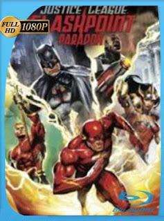 Liga de la Justicia: La Paradoja del Tiempo 2013HD [1080p] Latino [GoogleDrive]