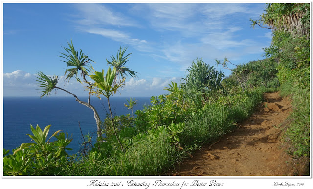 Kalalau Trail: Extending Themselves for Better Views