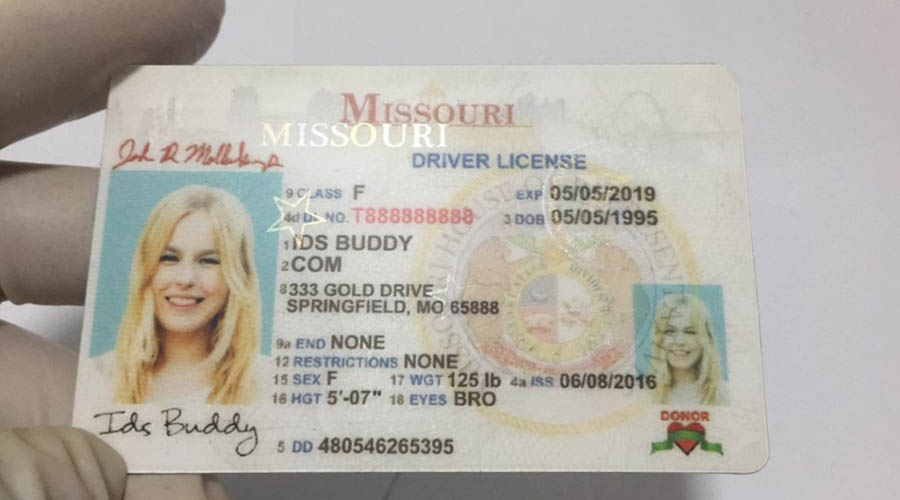 springfield mo renew drivers license