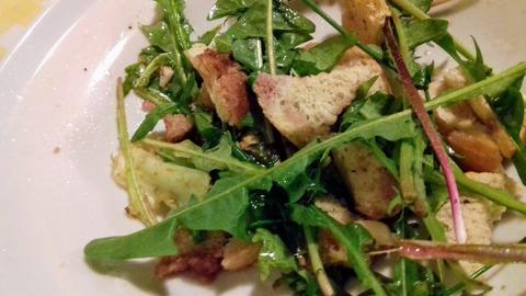 pitypang  saláta