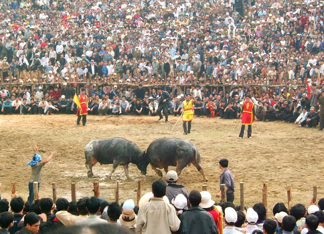 10 interesting festivals on the first lunar month in the north of Vietnam 8