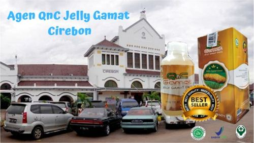 Qnc Jelly Gamat Cirebon