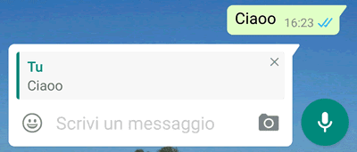 Messaggio whatsapp quotato