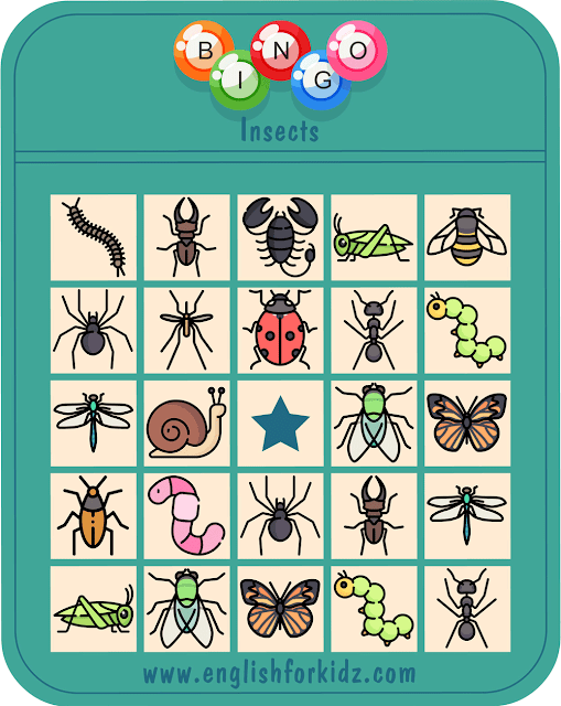 Insects bingo game – printable ESL worksheets for English teachers and students