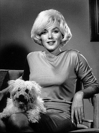 Marilyn monroe y su vida con el perro