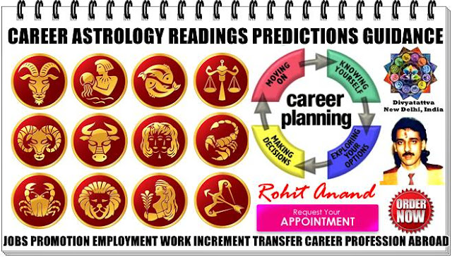 career horoscope, astrology job consultations, vedic astrologer Rohit Anand, career horoscope consultations, Kundli readings for promotion and employment