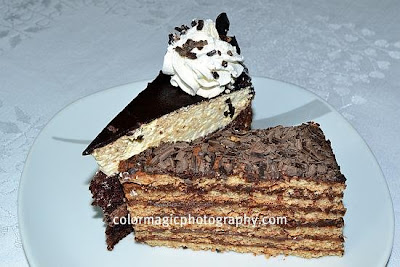 Two slices of cake with chocolate and walnut