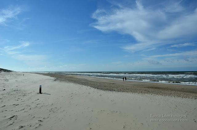 Hiking on a beach of Dunes of Texel National Park, near De Koog village.