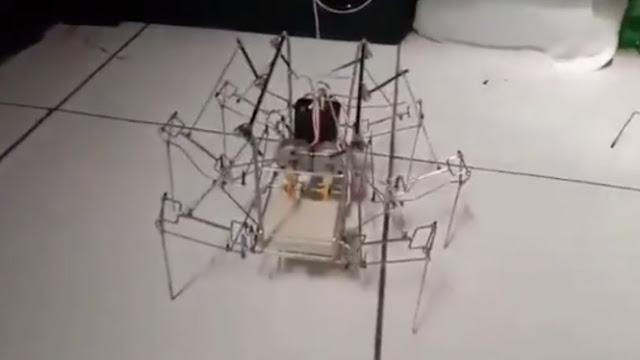 Viral, Robot Laba-laba Ini Buatan Tunawicara Asal Purwakarta