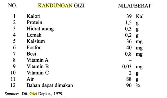 Tabel Kandungan Gizi Tanaman Bawang merah