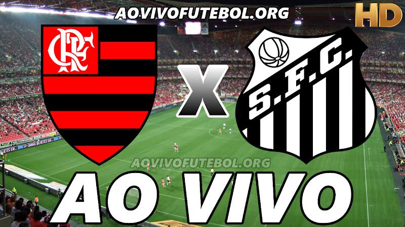 Assistir Flamengo x Santos Ao Vivo HD