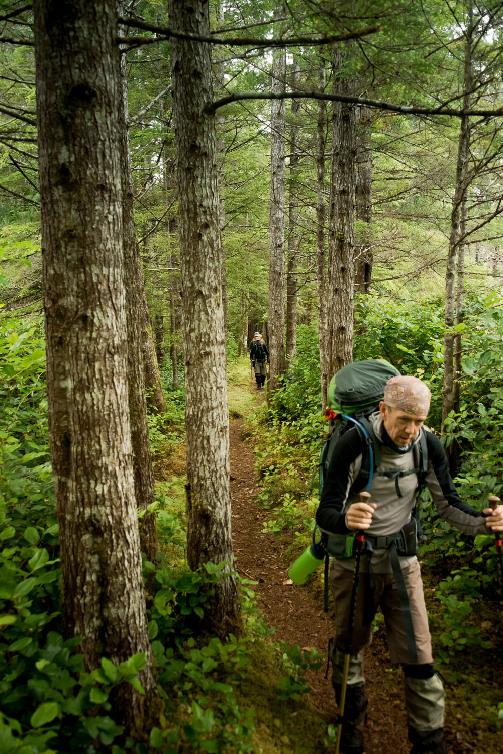 Cape Scott Provincial Par's trails are easy to walk