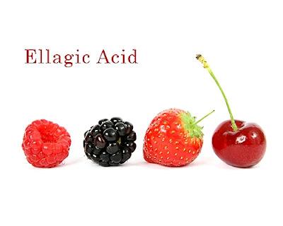 Asid Ellagic Di Dalam Anggur Muscadine