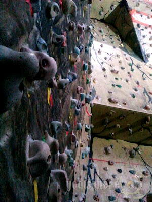Different wall stone grips of the Camp Sandugo climbing wall