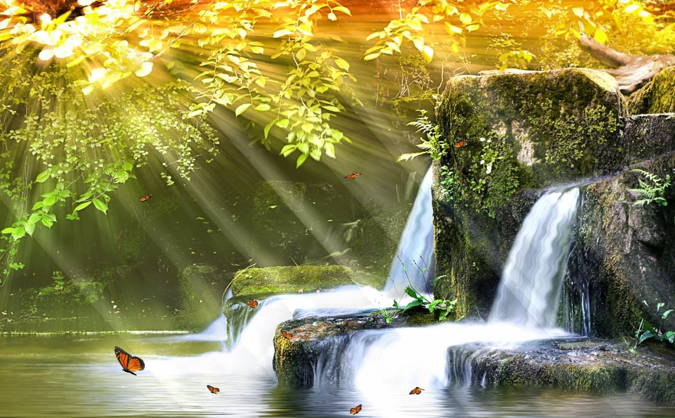 Fish Tank 3d Live Wallpaper For Pc Waterfall Wallpaper Animated Wallpaper Animated