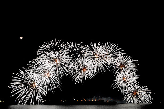 daisy-like-fireworks-display