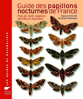 Guide papillons de nuit