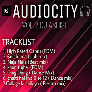 AUDIOCITY VOL.2 Album Cover Back