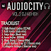 Audiocity Vol.2 - DJ Ashish