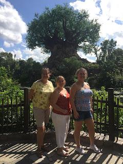 Tree Of Life, Animal Kingdom Walt Disney World