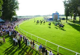 Windsor racing tips