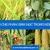 Ứng dụng chế phẩm sinh học trong sản xuất nông nghiệp
