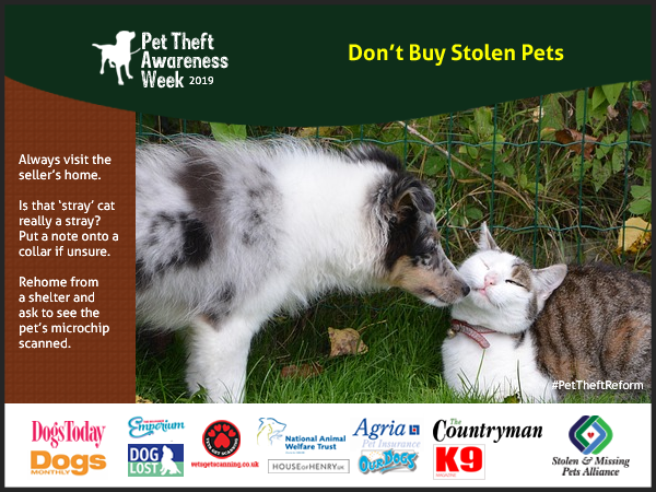 make sure you check the pet's microchip