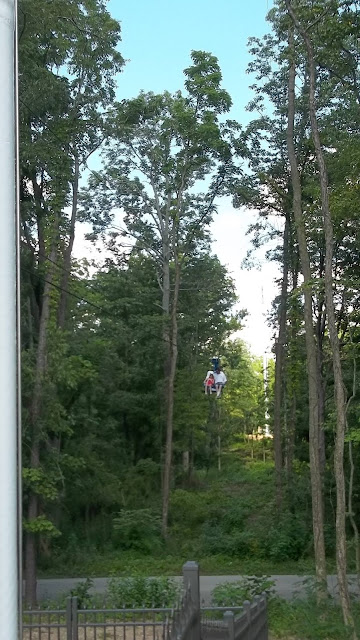 things to do in Mooresville with Teens Flying Eagle Zipline Pioneer Park