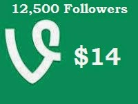 Cheap Vine Followers