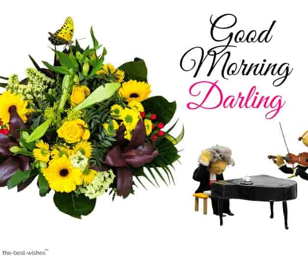 wonderful good morning darling