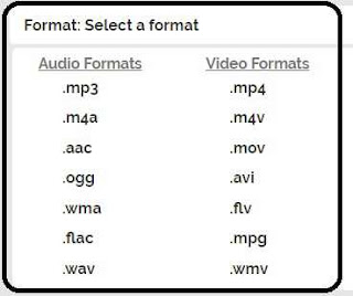 select media formate to convert video