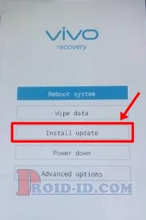 Install Update Vivo