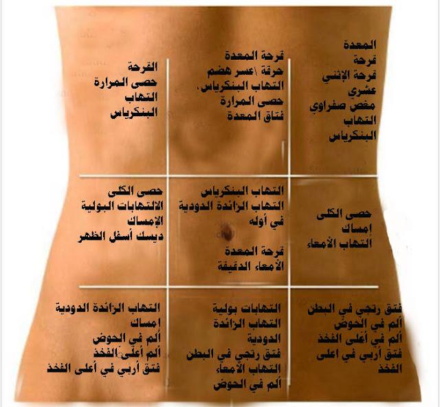 """كيف تكتشف مرضك معتمداً على مكان الألم """"خريطة البطن"""""""
