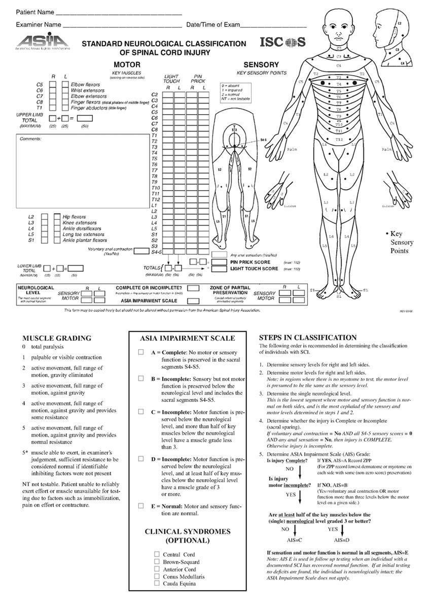 ER goldbook: Spine trauma