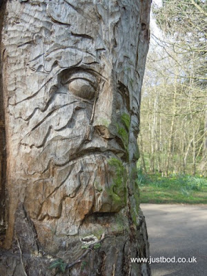 Green Man Carving, West Bank Park, York, Yorkshire