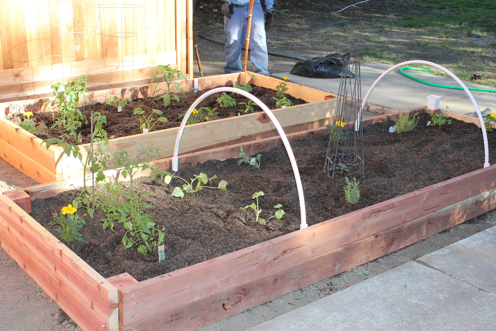 Naturally Blissful Raised Bed Garden