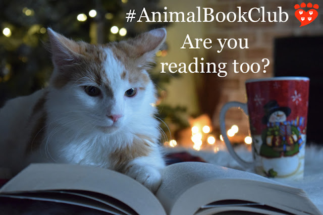 This month the animal book club is reading The Emotional Lives of Animals by Marc Bekoff. Cosy up with a book, a cat and a cup of coffee!