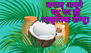 Homemade Shampoo in Hindi