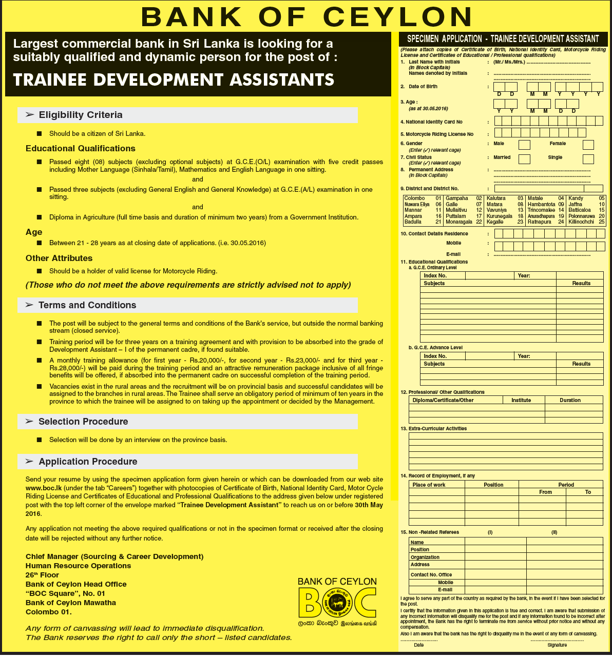 Trainee Development Assistants