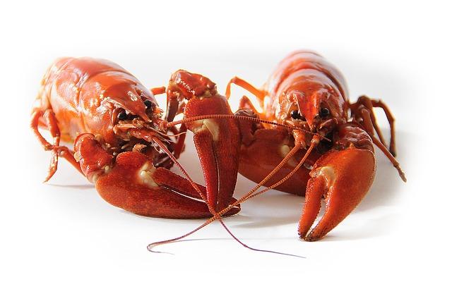 Cara Memasak Ekor Lobster