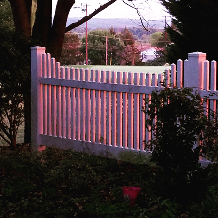 image of a section of a white picket fence at dusk, with the sides of the pickets lit up in pink sunlight