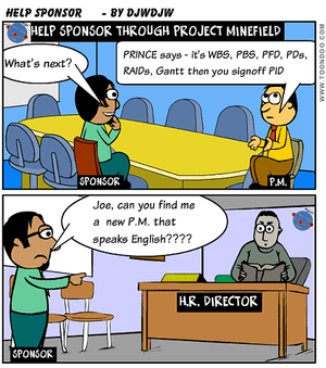 Help Project Sponsor through Project Management processes