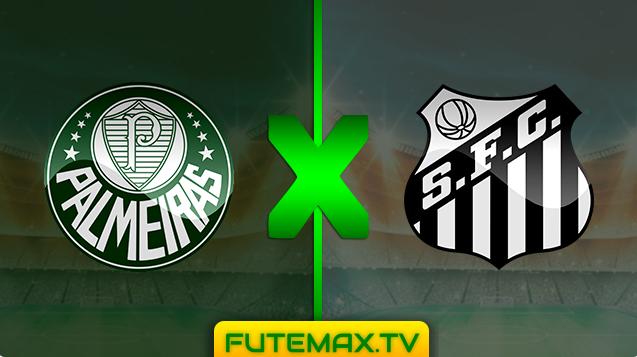 Assistir Palmeiras X Santos ao vivo HD com Imagem 18/05/2019 às 19hs00 - Campeonato Brasileiro de Futebol Série A  (FUTEMAX)