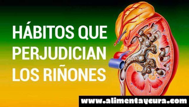 Los ri ones se consideran los rganos m s indispensables for En k parte del cuerpo estan los rinones