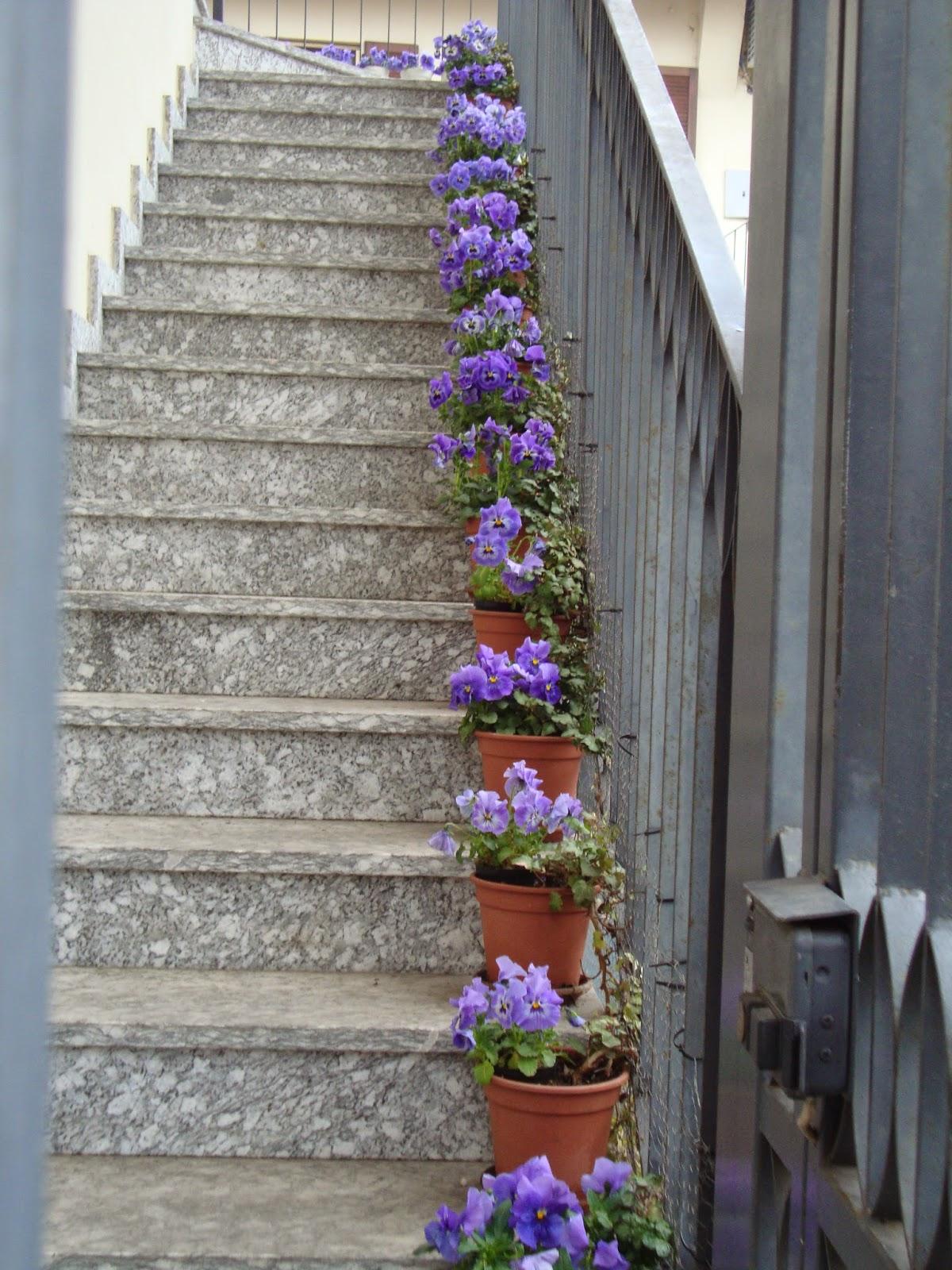Un piccolo giardino in citt una lunga scala di fiori - Scale in giardino ...