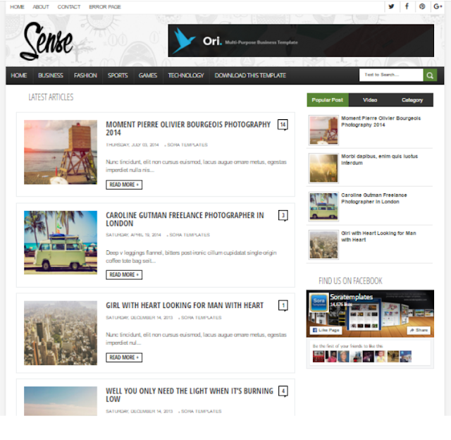 Sense - Personal Blogger Template